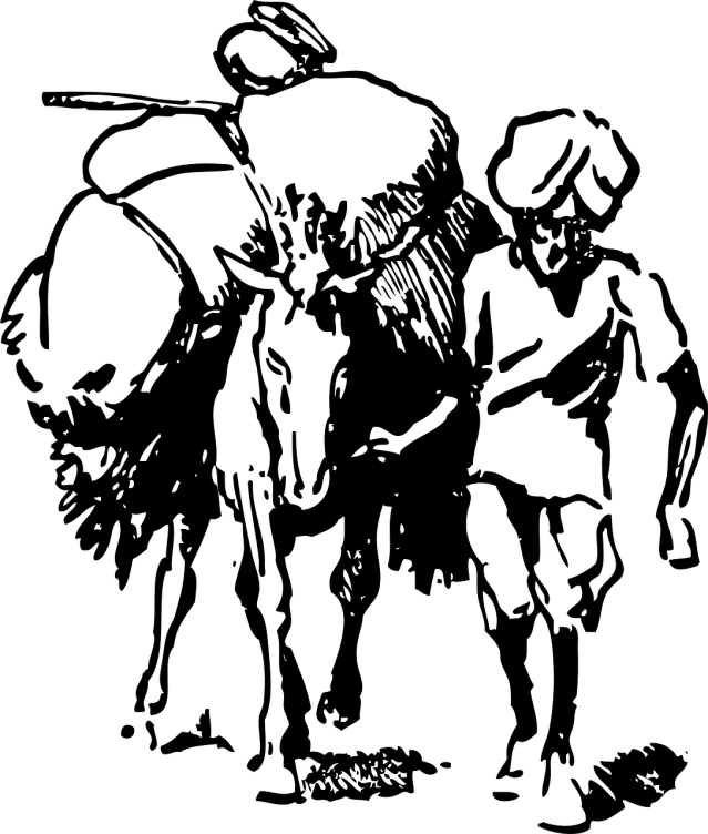 Shankaran Pillai