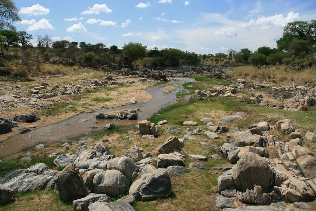 Rivière africaine
